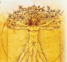 L'aventure Du Vivant Comme Transcendance