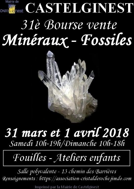 31è Bourse Vente De Minéraux Et Fossiles à Castelginest (31780)