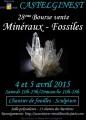 agenda.Toulouse-annuaire - 28è Bourse Vente Minéraux Et Fossiles Castelginest