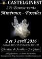 agenda.Toulouse-annuaire - 29è Bourse Vente Minéraux Et Fossiles De Castelginest (31780)