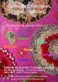 Agenda : Puces De Couturi�res Fontaine Lestang - Toulouse