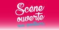agenda.Toulouse-annuaire - Appel à Candidature Scène Ouverte Aux Amateurs