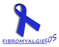 agenda.Toulouse-annuaire - 19ème Journée Mondiale De La Fibromyalgie