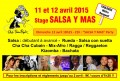 agenda.Toulouse-annuaire - Stage Et Tea Party Salsa Y Mas
