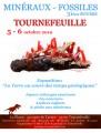 agenda.Toulouse-annuaire - 31ème Bourse Aux Minéraux Et Fossiles