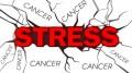 agenda.Toulouse-annuaire - Stress Et Cancer