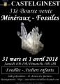 agenda.Toulouse-annuaire - 31è Bourse Vente De Minéraux Et Fossiles à Castelginest (31780)