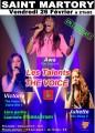agenda.Toulouse-annuaire - Les Talents De The Voice En Concert