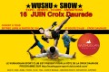agenda.Toulouse-annuaire - Wushu Show