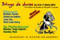 agenda.Toulouse-annuaire - Stage De Danse : Découverte Et Perfectionnement 2 !