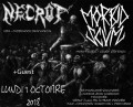 agenda.Toulouse-annuaire - Concert Deathmeta Avec Necrot (usa) + Morbid Scum