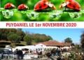 agenda.Toulouse-annuaire - Foire Aux Plantes Et Artisanat Local